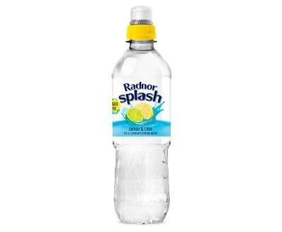 Radnor Hills Splash Lemon & Lime 24x500ml